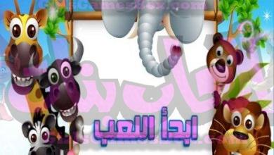Photo of لعبة تركيب صور الحيوانات المتنوعة